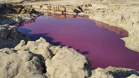 ضجة في الأردن.. بركة حمراء غريبة بجانب البحر الميت! صورة رقم 2