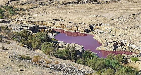 ضجة في الأردن.. بركة حمراء غريبة بجانب البحر الميت! صورة رقم 3