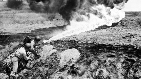 شبه الجزيرة الكورية: قصة بلدين في حالة حرب منذ أكثر من 7 عقود! صورة رقم 17